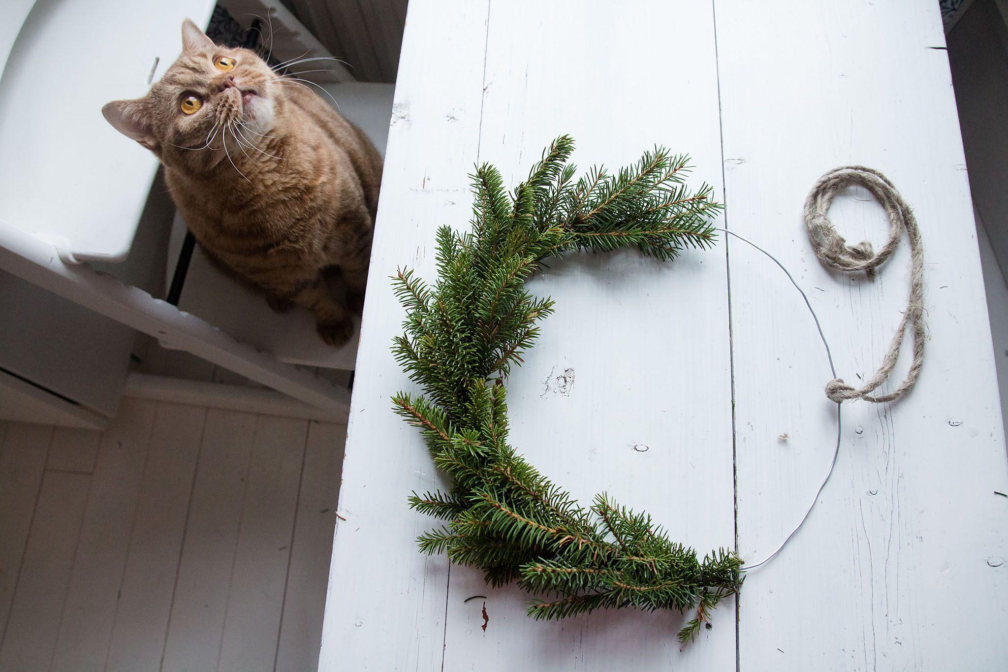 DIY minimalistic wreath.