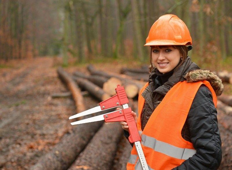 Abattage manuel et sécuritaire des arbres - Certification CSST ...