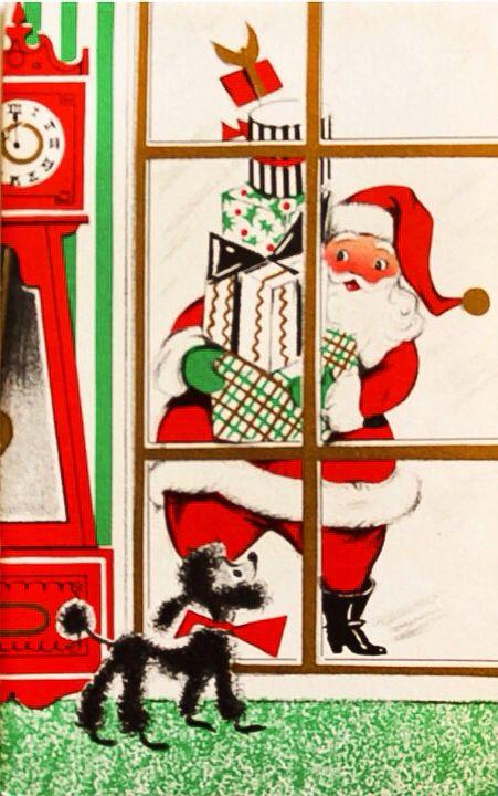 Poodle spies Santa on Christmas.