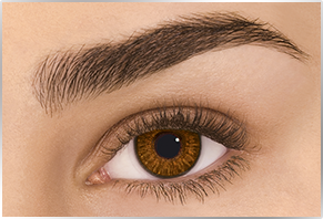 freshlook Natural contact lenses Brown Contact lenses