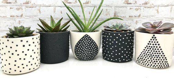 MADE TO ORDER - Teardrop ceramic succulent planter - modern minimalist small handmade planter - modern ceramics - minimalist pottery