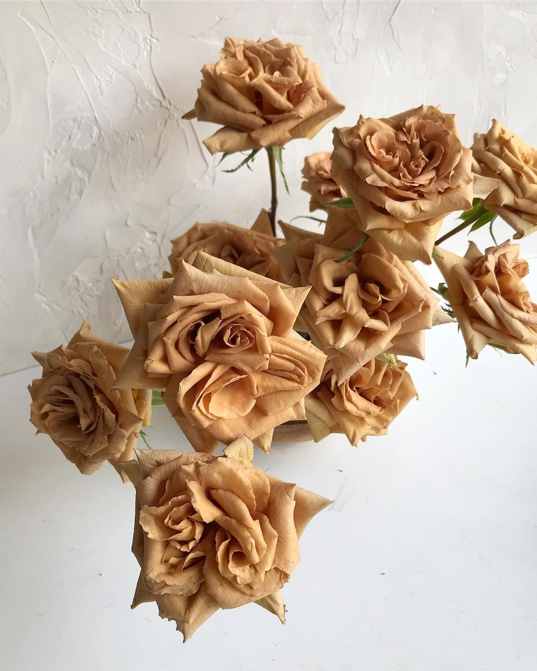 Divine Wedding Flowers: This Darling Rose Is Worth Her Weight In Gold Thank You