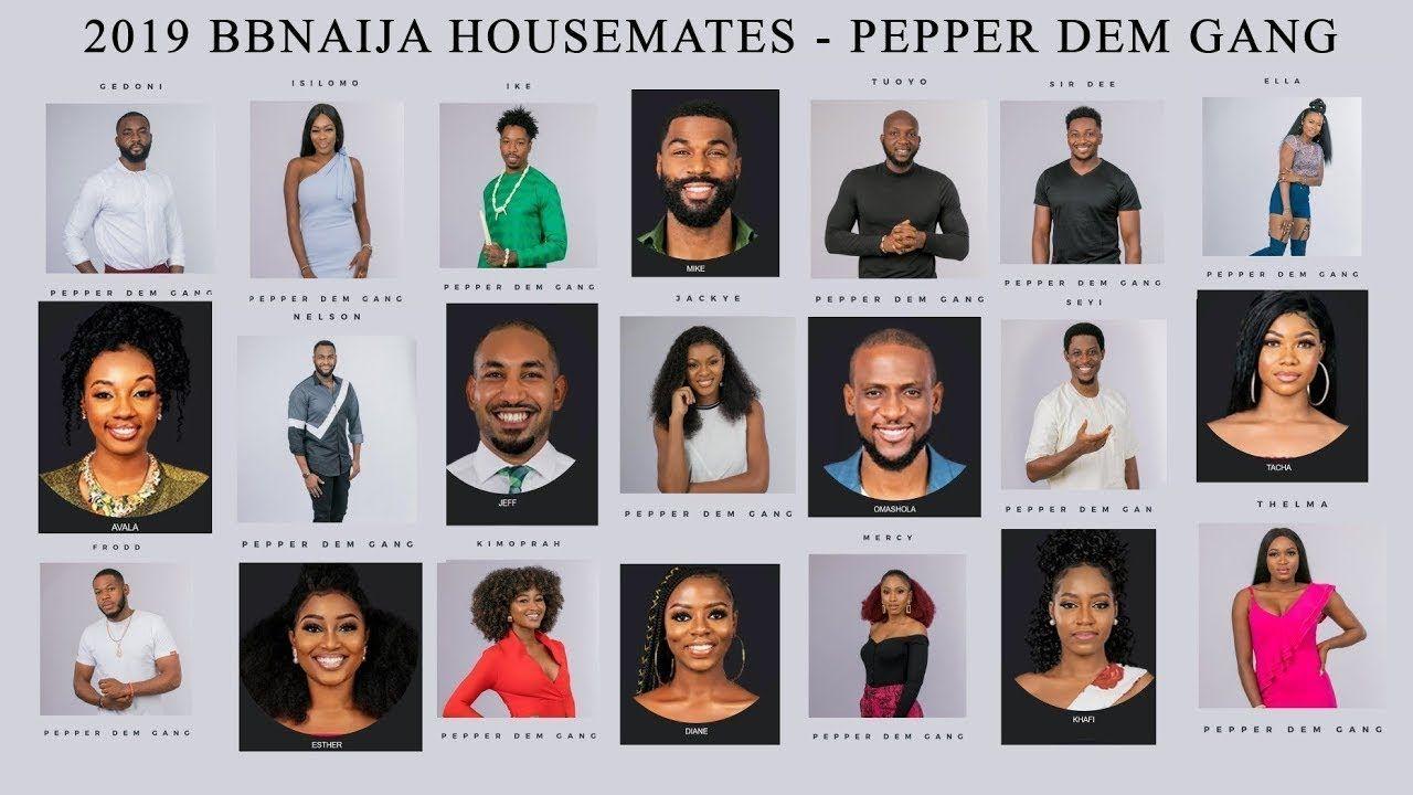 Meet The 2019 Big Brother Naija Housemates Pepper Dem Gang Big Brother Naija Reality Tv Shows