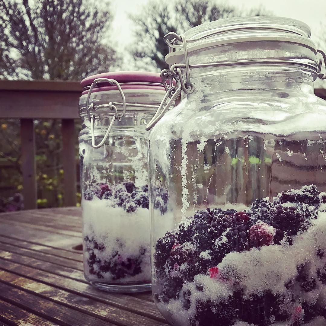 Blackberry gin prep I froze the blackberries after picking