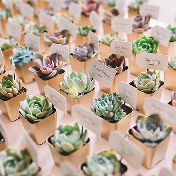 The Wedding Flower Trends you Need to Know for 2020