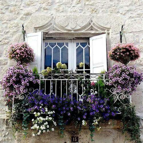 Flores varanda