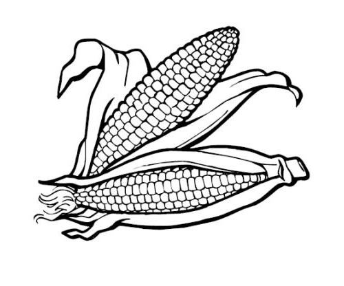 food coloring pages  vegetable coloring pages food