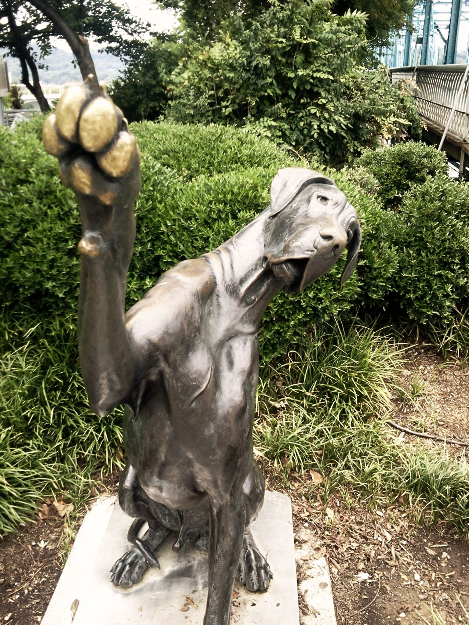 Great Dane Statue In Chattanooga Great Dane Great Dane Dogs Dane