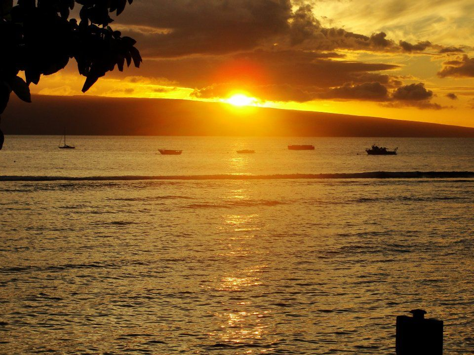 Our Honeymoon in Maui, Hawaii - Took this picture in Lahaina Town! Most amazing sunsets i've ever seen.