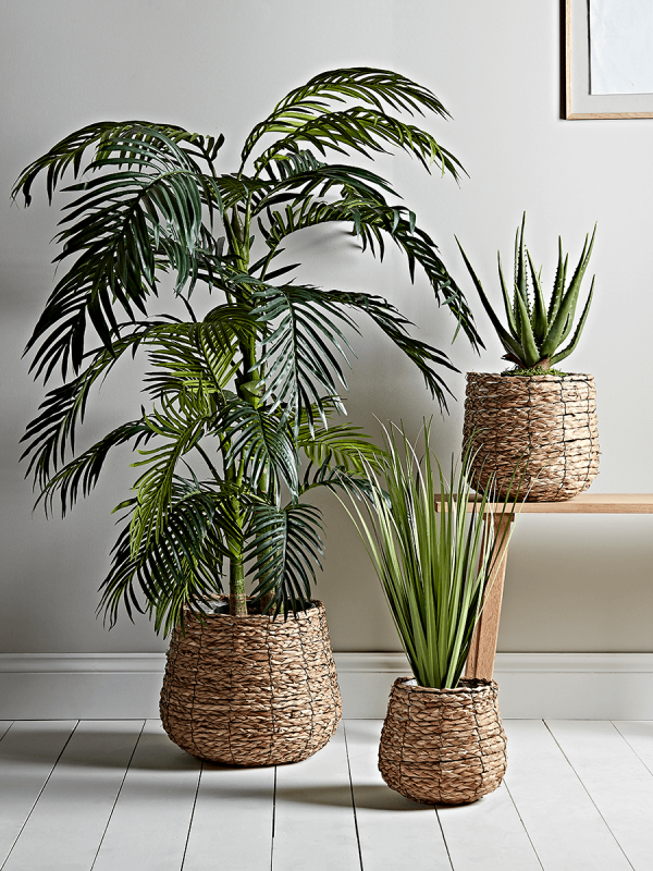 New Three Seagrass Basket Planters Indoor Plant Pots Planters Decorative Home Accessories Luxury Homeware Plant Decor Indoor Flowers Indoor Plant Pots