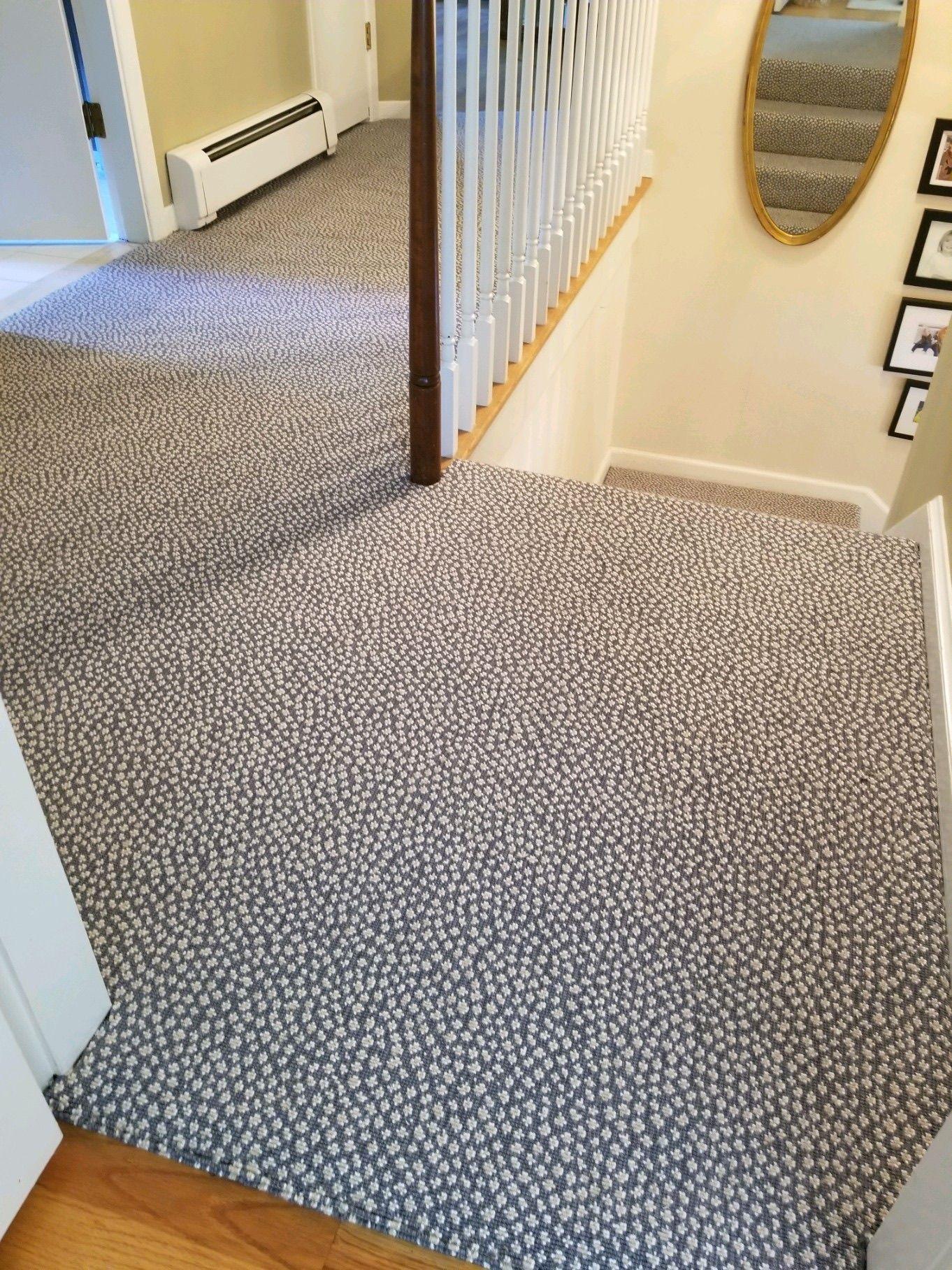 Rosecore Mirage Cheetah Print Animal Print Carpet Animal Print Stair Runner Printed Carpet