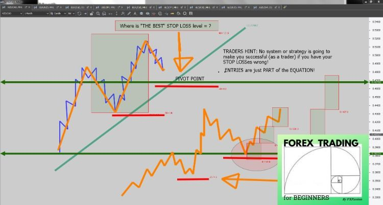 Forex Trading For Beginners Where Is The Best Stop Loss Level In