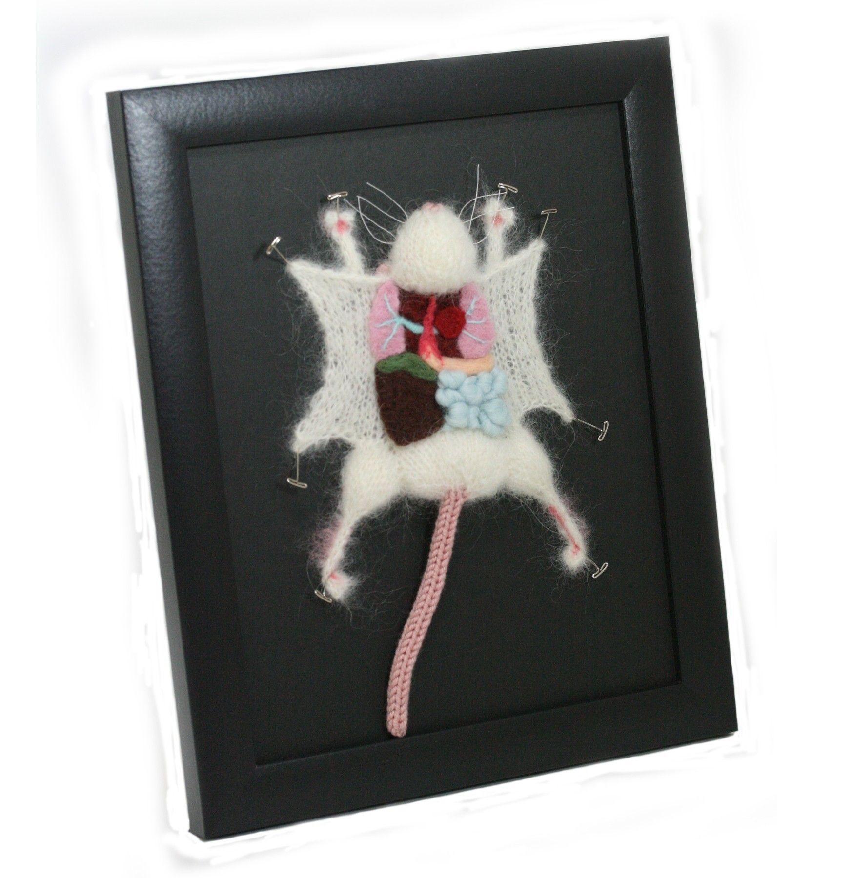Knit Lab Rat Dissection