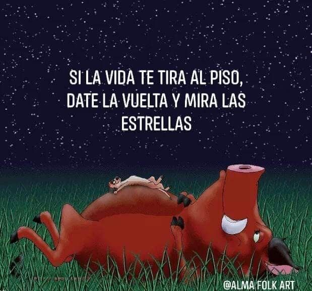 El Rey León Frases Inspiradoras De Disney Frases De Caricaturas Frases De Amor De Disney