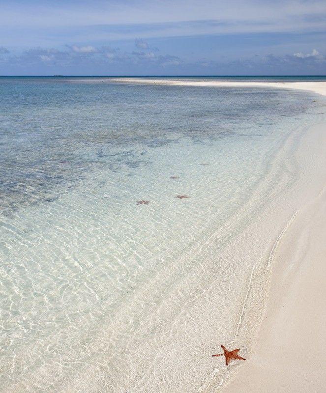 Jumby Bay Beach, one of Antigua's 365 pristine white sand beaches.