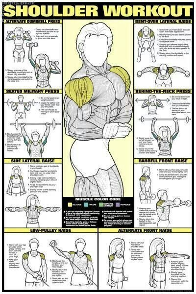 Shoulder And Arm Workout