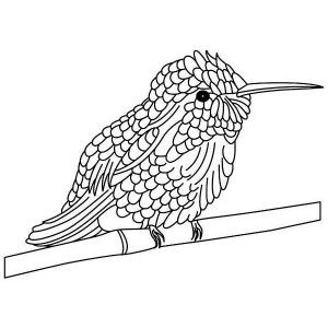 Hummingbirds, Cute Hummingbird Perched In Tree Stems Coloring Page: cute-hummingbird-perched-in-tree-stems-coloring-page.jpg