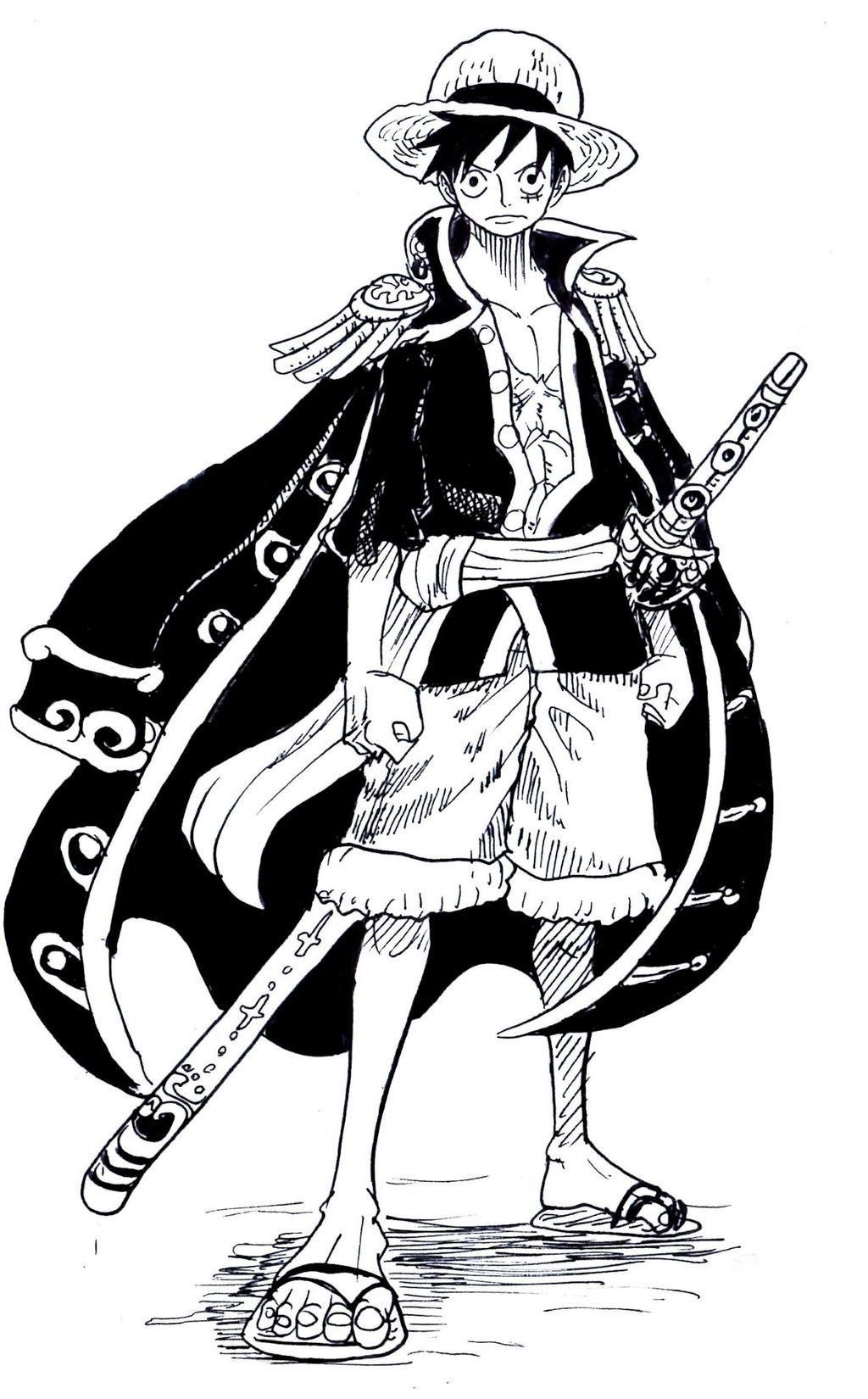 Pirate King Monkey D Luffy One Piece One Piece One Piece