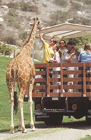 San Diego Wild Animal Park And Botanical Park California San