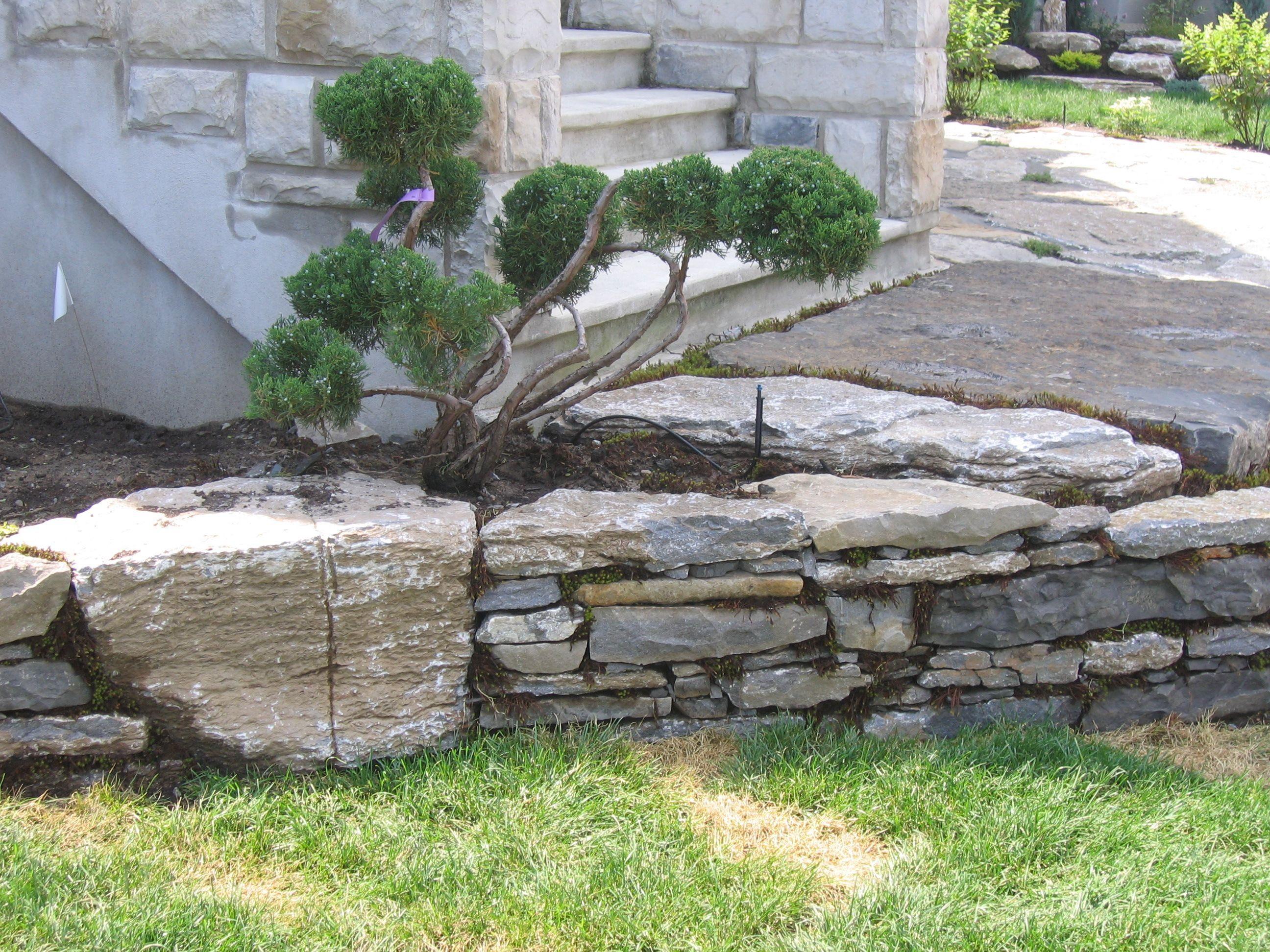 Amenagement Terrasse Avec Muret Vertigo Jardins Designer De