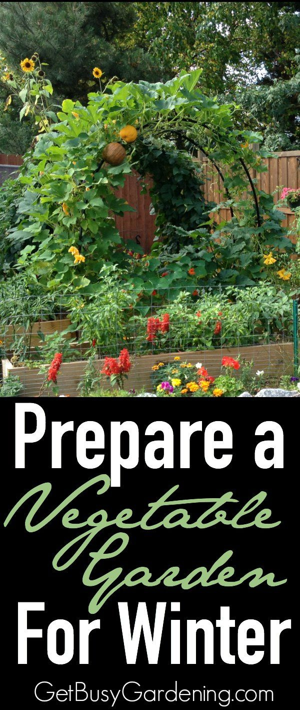 7bbf2afbe3e2ee37b4dcbeb8c714fa51 - How To Prepare Georgia Soil For Gardening