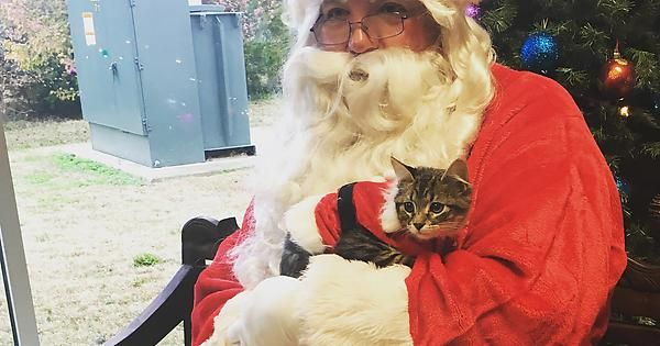 Local animal shelter raised money by offering pictures with santa http://ift.tt/2h5ZeCv