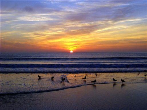 Myrtle Beach Sunrise Places We D Like To Visit