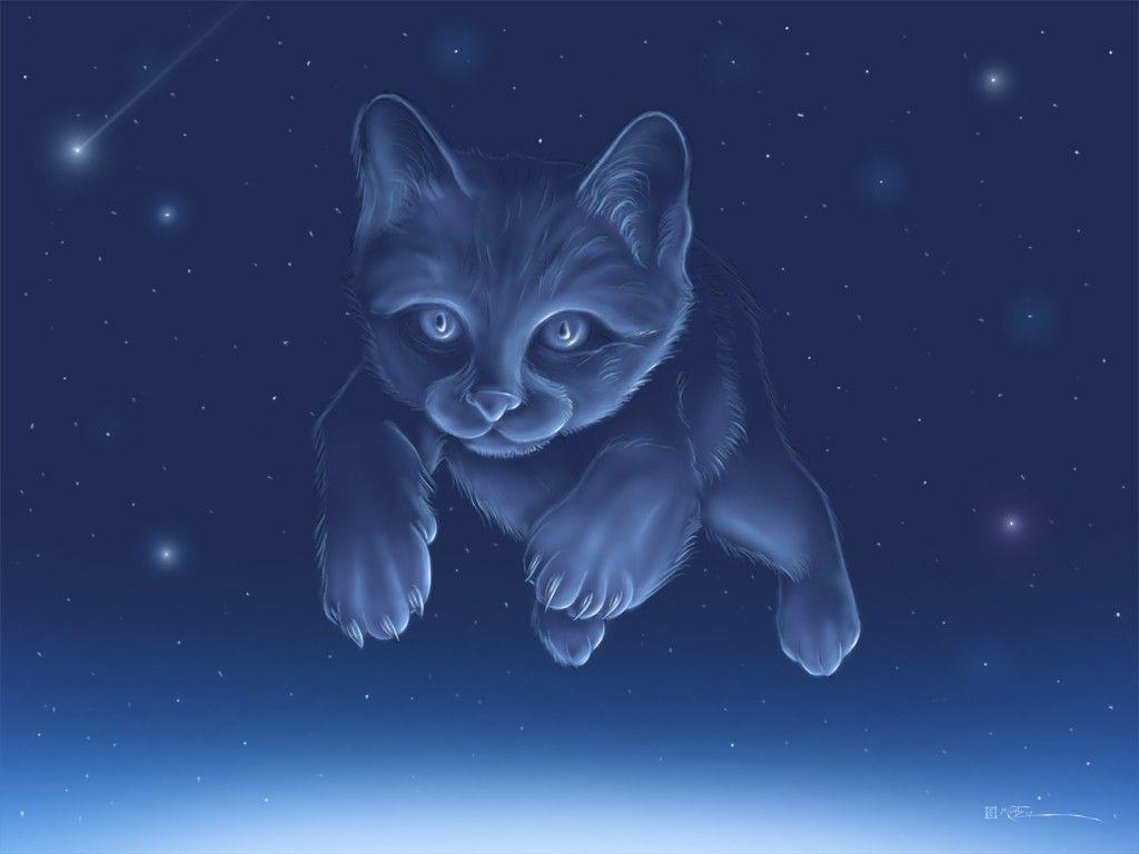 This Kitten Cat Wallpaper Cute Anime Cat Anime Art Fantasy