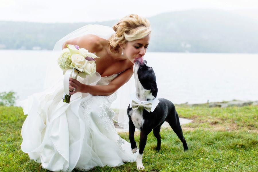 Boston Bride Dresses