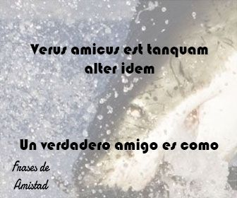 Frases De Amistad En Latin Frases De Amistad Amado Nervo