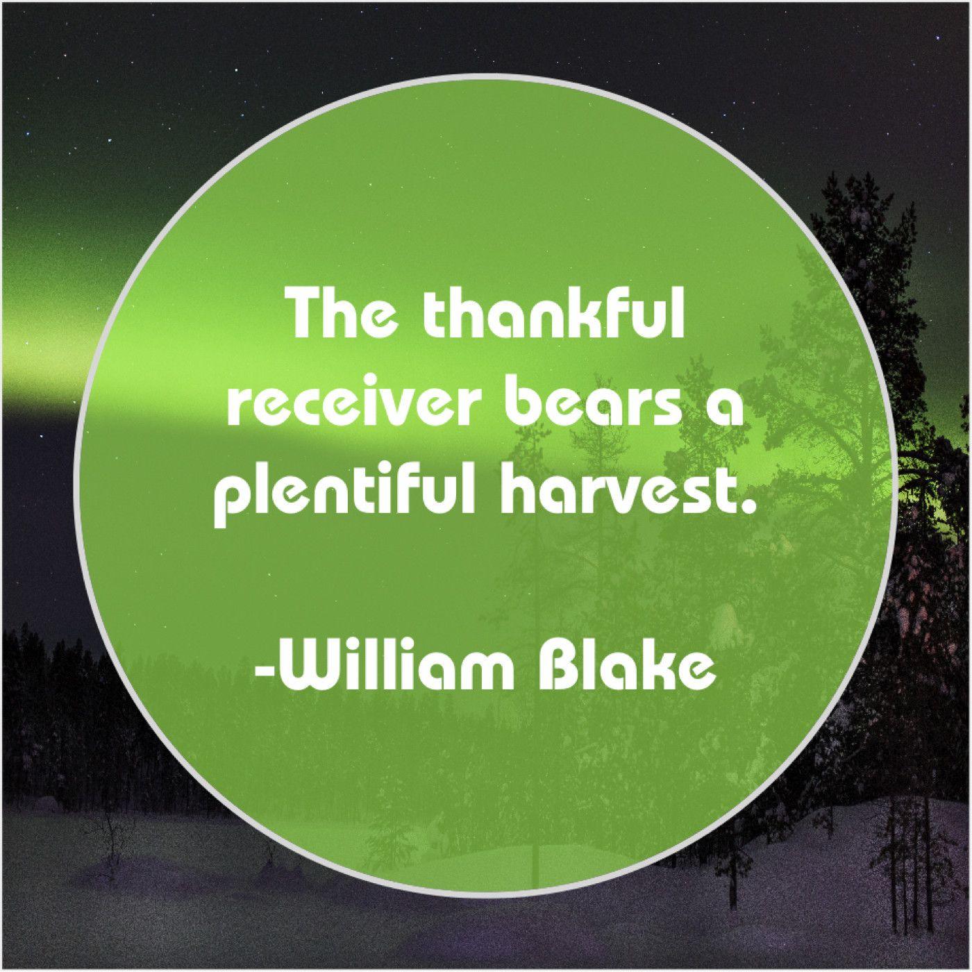 William Blake The Thankful Receiver Bears A Rick Yune William Blake Williams