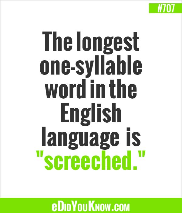 "Image result for The longest one syllable word in the English language is ""screeched."""