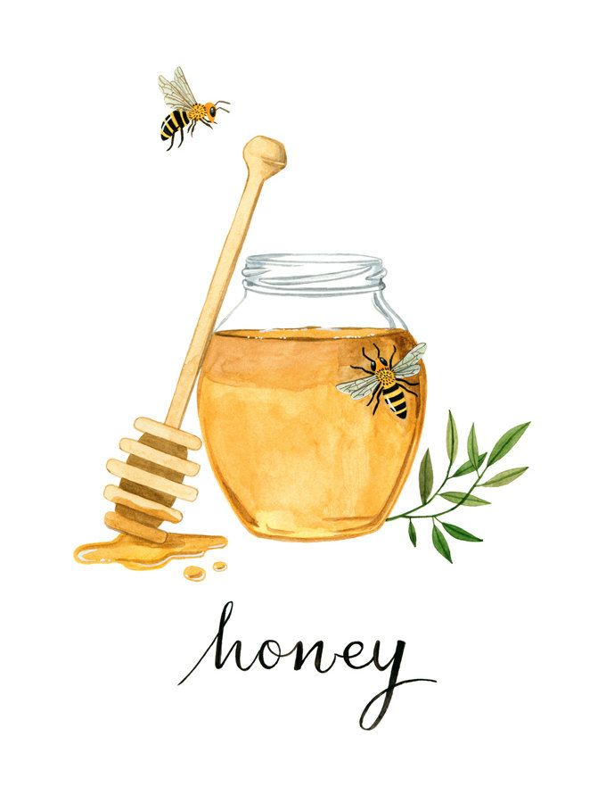 Honeybee Art Print Kitchen Art Kitchen Print Honey Art Watercolor Art Print Kitchen Decor Honeybee Art Honey Art Bee Drawing