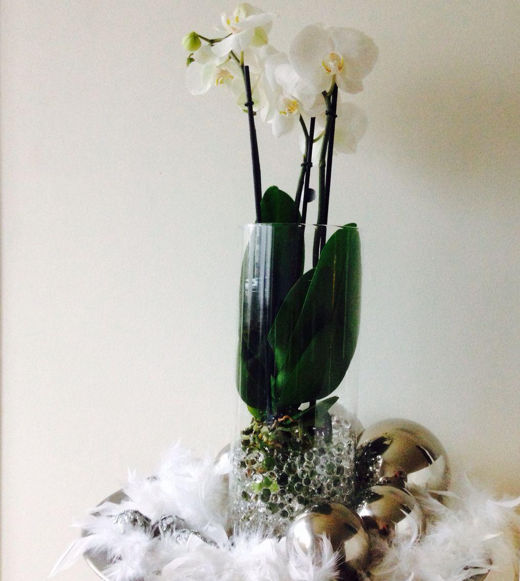Orchidee in Wasserperlen   Easy und stylisch