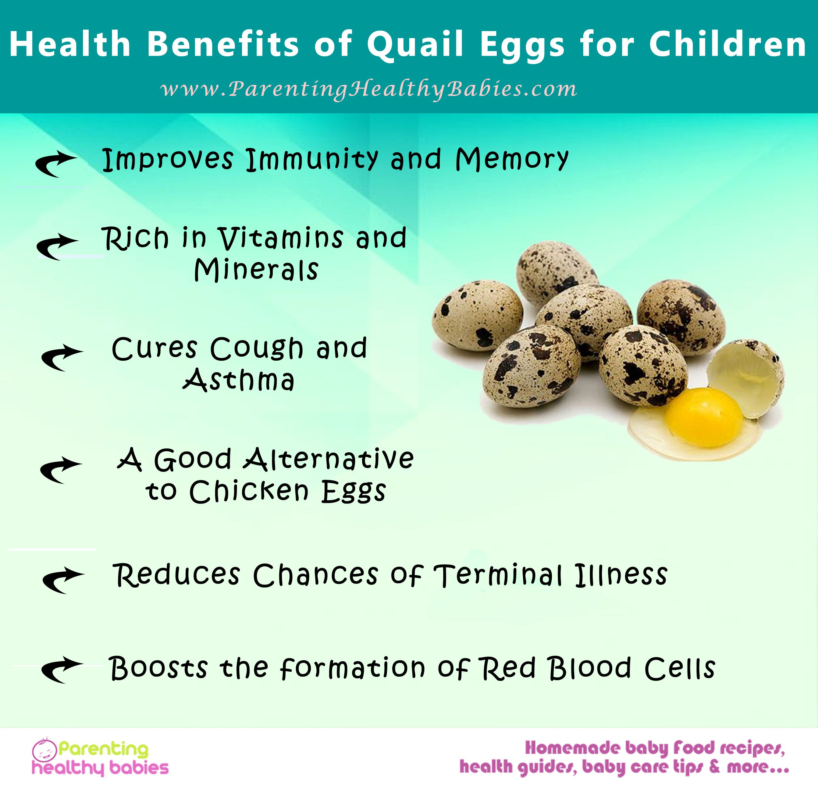 image result for quail egg decorating (with images) | egg