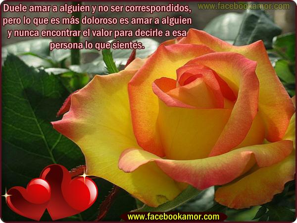 poemas de amor con flores   Imágenes de flores con