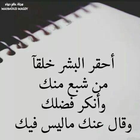احقر انواع البشر Words Quotes Quran Quotes Love Philosophy Quotes