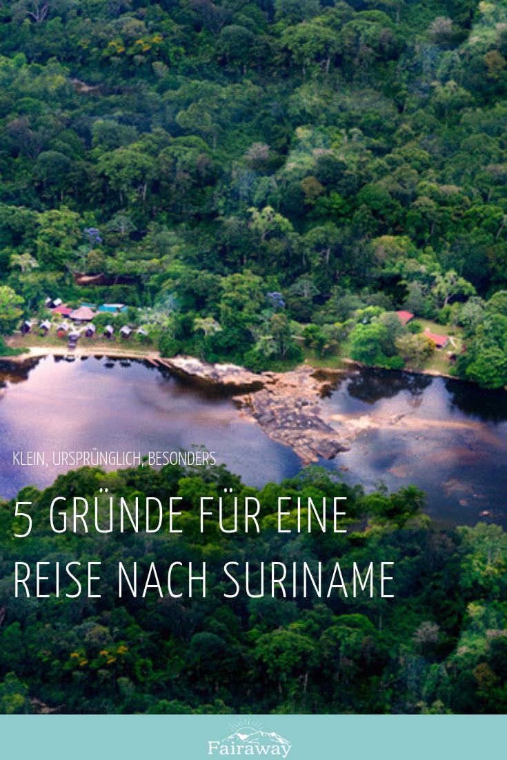 5 Grunde Fur Eine Reise Nach Suriname Zuid Amerika
