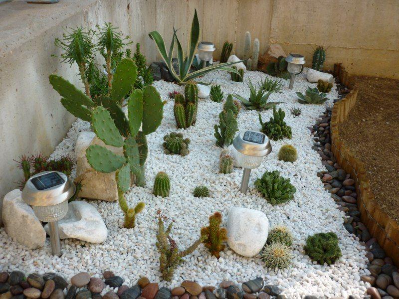 Aiuola giardino roccioso cerca con google giardino for Piante grasse per aiuole