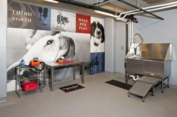 Image result for dog wash station nice signage pinterest image result for dog wash station solutioingenieria Choice Image