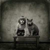 photo : We are the Cats | photographer : Andy Prokh