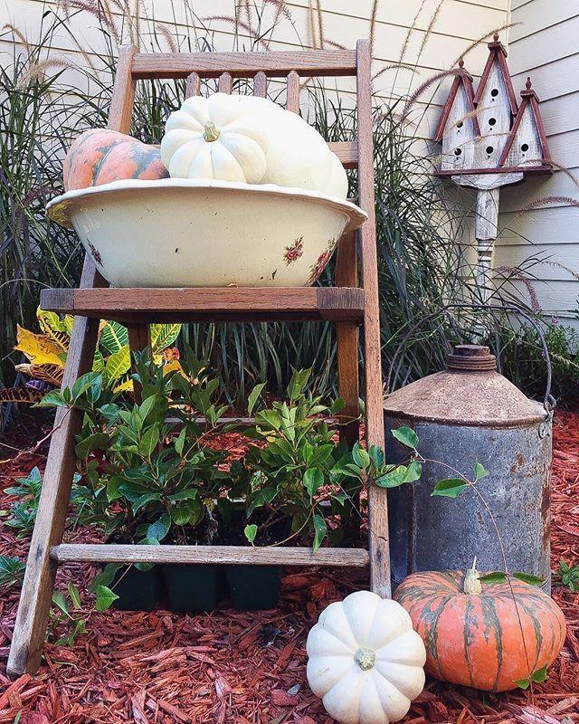 80 Winter Garden Decoration Ideas Winter Garden Garden 400 x 300