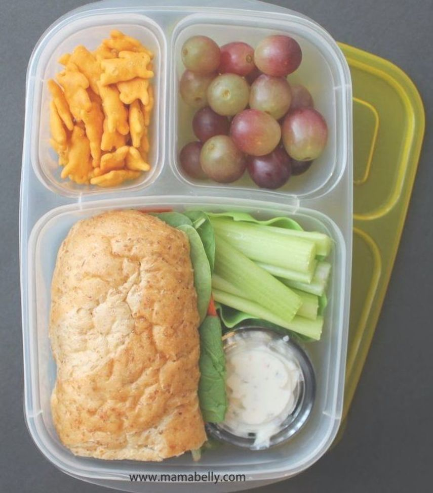 Easy and YUMMY lunch box ideas  packed in EasyLunchboxes