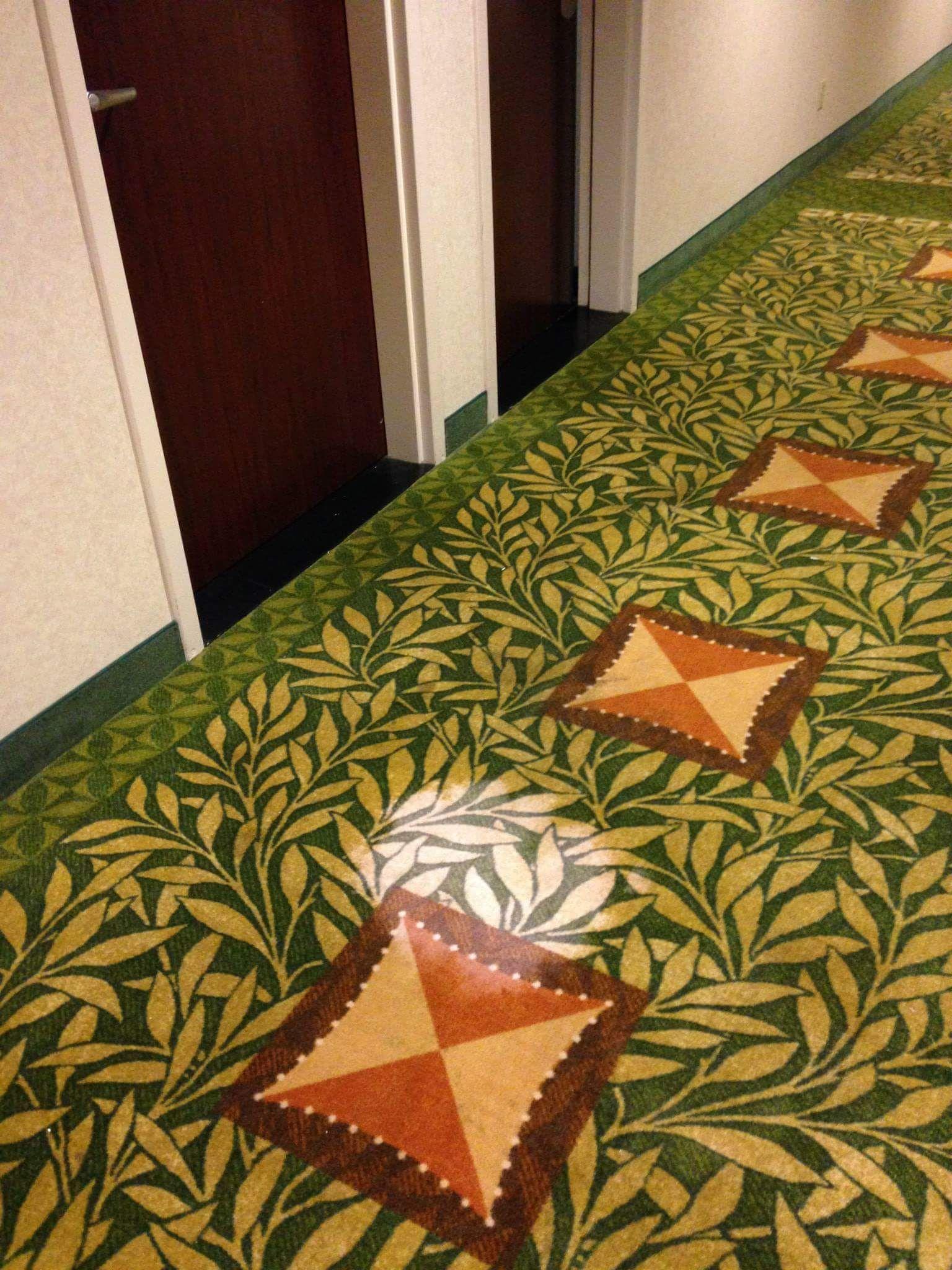 Best carpet bleach stain spot repair services louisville