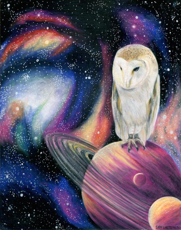 Cosmic Owl 2
