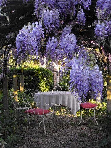 2011 0412griveliereavril160129 Jpg Jardins Deco Jardin Beaux