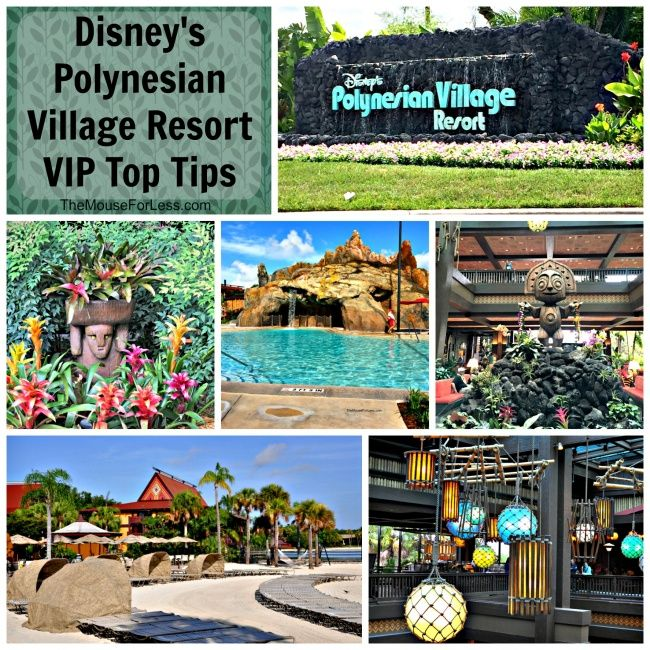 Disney\'s Polynesian Village Resort Guide in 2018 | Disney World ...