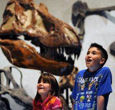 Prehistoric Journey : Denver Museum of Nature & Science