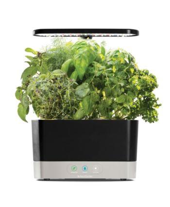 Aerogarden Harvest 6 Pod Countertop Garden In 2019 400 x 300