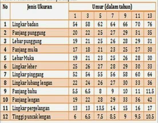 Ukuran Baju Anak Perempuan Umur 5 Tahun Kumpulan Materi Pelajaran Dan Contoh Soal 4